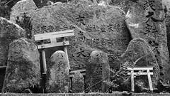 Graven Characters (Nick Condon) Tags: blackandwhite carved gate japan kanji kyoto lichen olympus45mm olympusem10 plants shrine stone