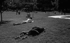Yerba Buena Gardens (bingley0522) Tags: leicaiiic zeissjenasonnar50mmf15ltm trix hc110h epsonv500scanner sanfrancisco themission yerbabuenagardens sunnyday homagetohcb autaut