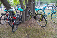 IMG_6521 (Omega Man) Tags: winnipeg manitoba canada plainbicycle dutch bike 2019 rollout distribution party random surprise august 14