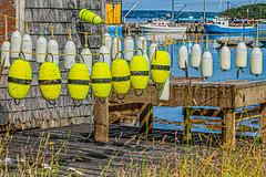 Just hanging out. (SpyderMarley) Tags: boats novascotia water fishingboats wharf canada summer fishingcommunity harbour fishingvillage nautical ropes