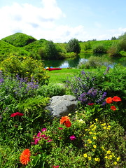 A summer day in August (peggyhr) Tags: peggyhr garden lake hills flowers canoe bluebirdestates alberta canada thelooklevel1red dsc05835a carolinasfarmfriends super~sixbronze☆stage1☆