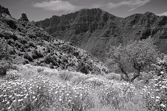 Looking towards the Vikos gorge, Mikro Papigo, Greece (Miche & Jon Rousell) Tags: blackandwhite bw lake mountains greece dragonlake zagori astraka timfi mikropapigo shrine mary pindos pindosmountains shrineofevangelistria
