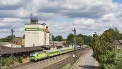 Flixtrain 193 991 op pad als FLX 1805. (twenterail) Tags: siemens vectron flixtrain flx trein spoorwegen train railroad eisenbahn zug