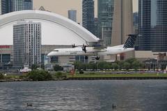 Billy Bishop Airport Landing (John Tavares Jr) Tags: billybishopairport porterairlines toronto