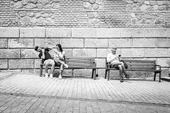 (fernando_gm) Tags: toledo xt1 fujifilm streetlife street spain calle callejera gente people person personas city ciudad monochrome monocromo monocromatico blackandwhite bw blancoynegro fuji 1024mm airelibre couple pareja