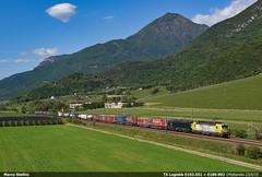 TXL E193.551 (Marco Stellini) Tags: tx logistik txl 193 vectron siemens brennerbahn alpha train rosco mercitalia trento treno intermodale verona quadrante europa