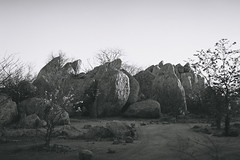 Damaraland (Marc Gascoigne) Tags: africa bw 400 namibia hp5400 blackandwhite film monochrome hp5 analogue damaraland