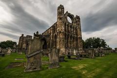 la cattedrale del tempo (anarcnide) Tags: cattedrale chiesa cathedral church elgin scozia d3300 nikon