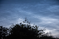 DSC_2037 (quintinsmith_ip) Tags: night dark dusk iceclouds noctilucentclouds nightshiningclouds icecrystals mesosphere