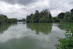 Hergnies (Nord) (sybarite48) Tags: hergnies nord france legrandmarais étang pond teich بركة 池塘 estanque λιμνούλα stagno 池 vijver staw lagoa пруд gölet