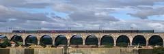 Rail Operations Group 47813 (15/08/2019) (CYule Buses) Tags: eastcoastmainline class47 royalborderbridge 47813 railoperationsgroup