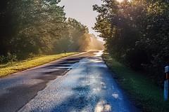 Ryto kelias (Jonas Juodišius) Tags: lietuva lithuania vilnius verkiai verkiuparkas
