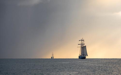 Oudeschild sail-out