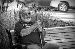 A little street photography..... (Kevin Povenz Thanks for all the views and comments) Tags: 2019 july kevinpovenz westmichigan michigan ottawa ottawacounty holland hollandstreetperformers male man blackandwhite bw canon7dmarkii sigma24105art bench cane bald beard sitting street streetphotography streetportrait