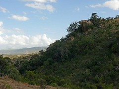 Lion King rock (Jackal1) Tags: kenya africa landscape lionkingrock