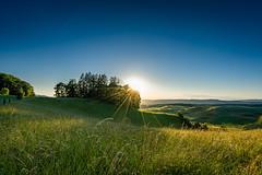 Landscape Fricktal (UpuautX) Tags: sony a7iii 1635mm zeiss fricktal aargau landschaft landscape aussicht vista wiese grass abend evening sunset sunrays sonnenstrahlen schweiz switzerland nordwestschweiz