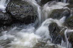 Frasers Gully stream (Ian@NZFlickr) Tags: frasers gully water slow exposure notripod dunedin nz