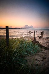 NABU Zaun (Fichtenelch69) Tags: baltic beach clouds coast flensburgerförde germany gras holnis küste meer nabu natur ostsee schleswigholstein sea strand sunlight sunset wasser wolken zaun nature