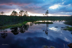DSC08717-1 (heixheix) Tags: sunset bog sky water reflexions nature landscape beautyofnature