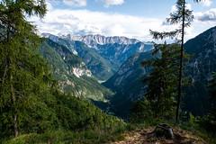 Triglav National Park (mireiatarres) Tags: nature mountains trees landscape forest paisajes outside