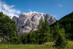 P1100942 (mireiatarres) Tags: trees forest mountains landscape paisajes nature outside