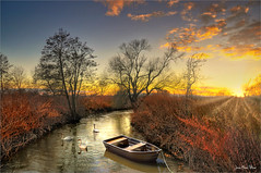 The three swans (Jean-Michel Priaux) Tags: ried alsace france nature landscape river muttersholtz paysage savage sunset sun sky colors reflect priaux tree trees autumn boat pathway calm quiet winter