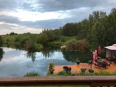 Good morning from Alberta, Canada (Trinimusic2008 -blessings) Tags: reflections rain sky trees deck lake lawn lush gratitude family bluebirdestates holiday vacation peggyandted canada alberta nature judymeikle trinimusic2008