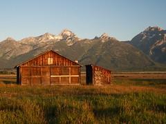 Mormon barn at sunrise (alanrharris53) Tags: norman barn teton national park light sunrise wood glow grasses mountains