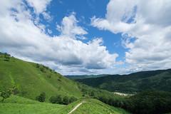 20190813XT3_6245 (Gansan00) Tags: fujifilm xt3 xf18135 fujifilmxseries japan hiroshima ブラリ旅 聖湖 深入山 snaps hijiriko landscape summer 8月 green akiota