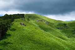 20190813XT3_6252 (Gansan00) Tags: fujifilm xt3 xf18135 fujifilmxseries japan hiroshima ブラリ旅 聖湖 深入山 snaps hijiriko landscape summer 8月 green akiota