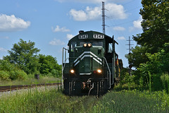 Y&S 8343 Thru the Grass. Youngstown, OH (bobchesarek) Tags: youngstownsoutheastern trains ys railroad locomotive emdgp10
