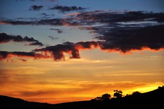 So far away... (Ruby Ferreira ®) Tags: sunset silhuetas silhouettes trees árvores montanha hill socorrosp pôrdosol