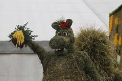 PHOTO Dragon made of hay (Sidolix) Tags: dragon drache heu hay fest festival scheffau austria oesterreich art kunst