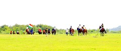 Happy Independence Day (Captured by Bachi) Tags: india independenceday morning flickr bestshot bestclick click greenery green best crosscountry travel holiday love polopeople polo equestrains equestrain new me horses horse