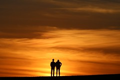 goodbye sun (Wackelaugen) Tags: sunset sundown orange couple puertodelacruz tenerife teneriffa spain europe canaries canaryislands canaryisles canon eos 760d photo photography stephan wackelaugen