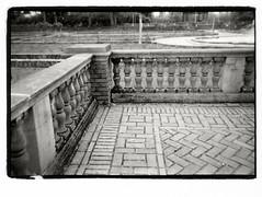 Rose Garden (Robert Drozda) Tags: portland oregon peninsulapark rosegarden peninsularosegarden concrete brick balustrade bw monochrome film ilfordhp5 olympusxa2 bluemooncamera drozda