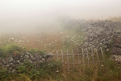 Foggy island (Graciosa, Azores, Portugal)