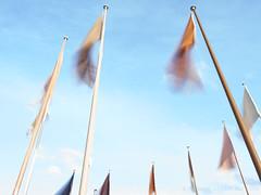 2019-08-11 19.55.41 - Som vinden blæser, Uge 32, Jens Otto Krags Plads, Randers - _8110045 - © Anders Gisle Larsson