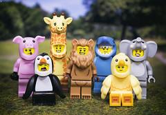 The Animal Costume Party (Jezbags) Tags: the animal costume party toy toys lego legos macro macrophotography macrodreams macrolego pig giraffe lion elephant penguin chick shark