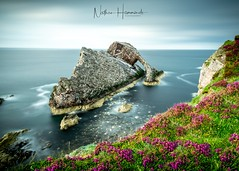Bow Fiddle Rock (Nathan J Hammonds) Tags: bow fiddle rocks scotland uk coast flowers east north sea water seascape landscape nd filter long exposure clouds movement lee nikon d850