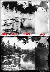 Dry plate collodion step test comparison (Blurmageddon) Tags: senecaimprovedview 5x7 dryplatecollodion uvphotographics uvpx epsonv700 glassnegative glassplate exposuretest steptest