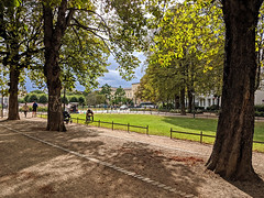 Bonn / Poppelsdorfer Allee (Aviller71) Tags: germany deutschland bonn poppelsdorf poppelsdorferallee architecture architektur trees bäume nature natur