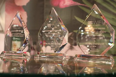 "2019 WIFI Impact Awards • <a style=""font-size:0.8em;"" href=""http://www.flickr.com/photos/45709694@N06/48545208707/"" target=""_blank"">View on Flickr</a>"
