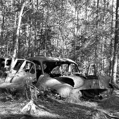 carcemetery024 (salparadise666) Tags: car cemetery near ryd rolleiflex sl 66 planar 80mm fomapan 100 boxspeed caffenol cl nils volkmer sweden landscape nature detail forest wood bw black white monochrome analogue medium format 6x6 square
