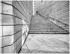 In the Middle of Nowhere (Silke Klimesch) Tags: donnerstagsmonochrom berlin deutschland potsdamerplatz sw schwarzweis treppe architektur texturen blackandwhite monochrome staircase stairs architcture laowacdreamer75f2mft olympus omd em5markii ultrawideangle noiretblanc biancoenero blancoynero pretoebranco zwartwit fotografiamonochromatyczna чёрнобелый モノクロフィルム escalier scala scară escada escalera schody merdiven σκαλοπάτια лестница arhitectură arquitectura mimarlık αρχιτεκτονική архитектура flickrfreunde flickrfriends dustyspringfield inthemiddleofnowhere on1photoraw2019 luminar3 perspective pov