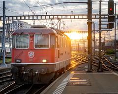 Into the sun - but which track? (jaeschol) Tags: bbc bahnhof eisenbahn elektrischelokomotive europa europe kontinent lokomotive re420 re420134 saas sbb slm schweiz suisse switzerland transport zürichhb chemindefer railroad railway