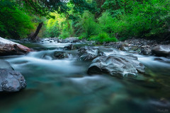 South Santiam River (Masako Metz) Tags: southsantiam river oregon pacific northwest water landscape rocks nature camping trip travel green forest beautiful clear swimming longexposure trees