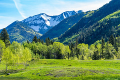 LaPlataCanyon_132 (allen ramlow) Tags: la plata canyon colorado landscape mountains trees sky snow scenic scenery outdoors nature sony alpha a7iii