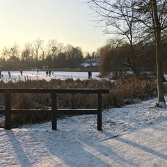 #winter #walk #❄️ #☃️ #❤️ #⛸ #🌅 #poland #poznań #sołacz #park #frozen #pond #tree #love #people #sunset #skyporn #afternoon #sunday #weekend #snow (pinus.acer) Tags: winter walk ❄️ ☃️ ❤️ ⛸ 🌅 poland poznań sołacz park frozen pond tree love people sunset skyporn afternoon sunday weekend snow