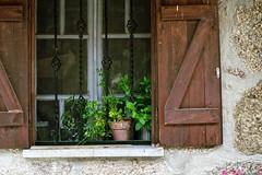 A Portuguese house (2/2) (lebre.jaime) Tags: portugal beira covilhã house architecture traditionalarchitecture digital fullframe ff fx nikon d600 voigtländer nokton 58f14sliis nokton5814sliis affinity affinityphoto